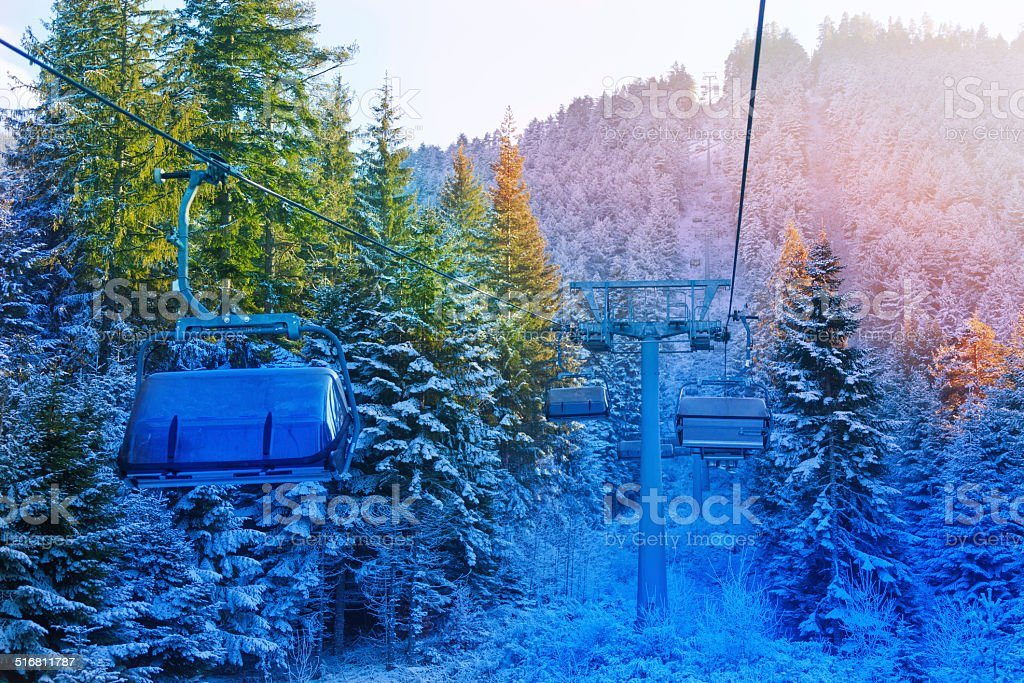 View of cabins in fir forest, Bansko, Bulgaria stock photo