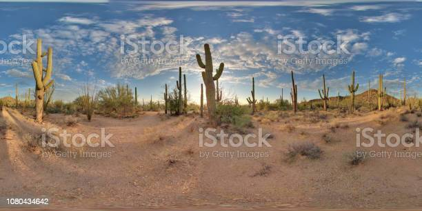 View of cactus picture id1080434642?b=1&k=6&m=1080434642&s=612x612&h=zsqmnrsfh6edz1kleftwozifq nfval5ka82dsotsxm=
