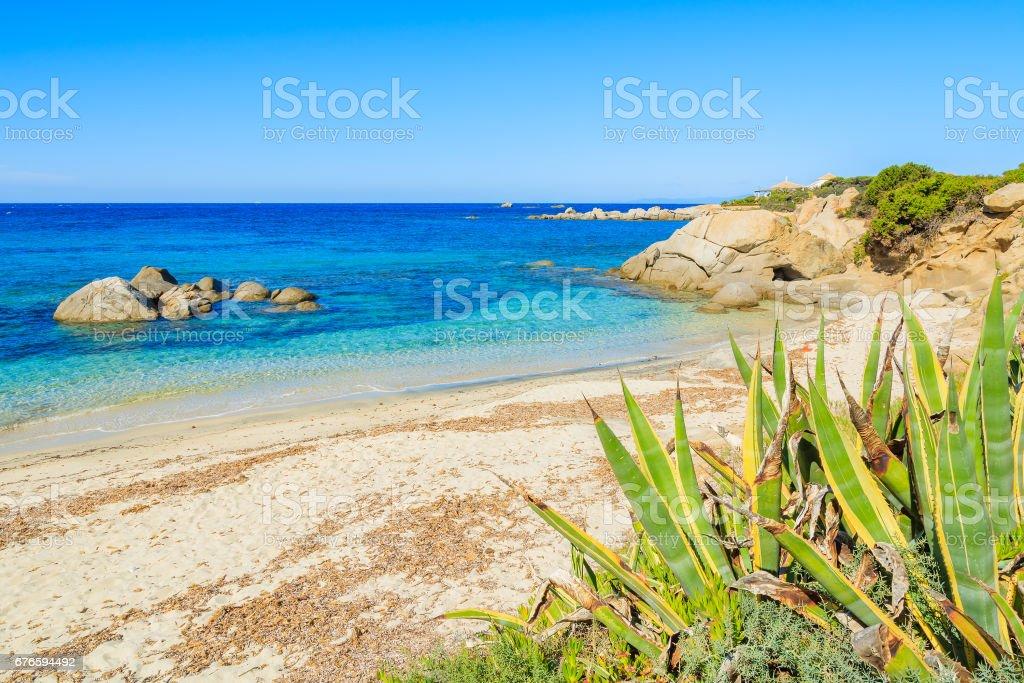 View of Cala Caterina beach and turquoise sea, Sardinia island, Italy stock photo