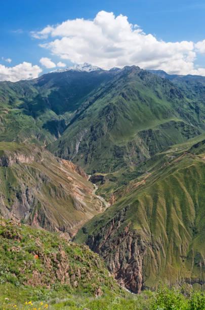 View of Canyon Colca, Peru stock photo