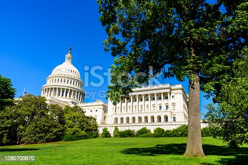 View of Capitol Building under blue sky framing with tree, Washington DC