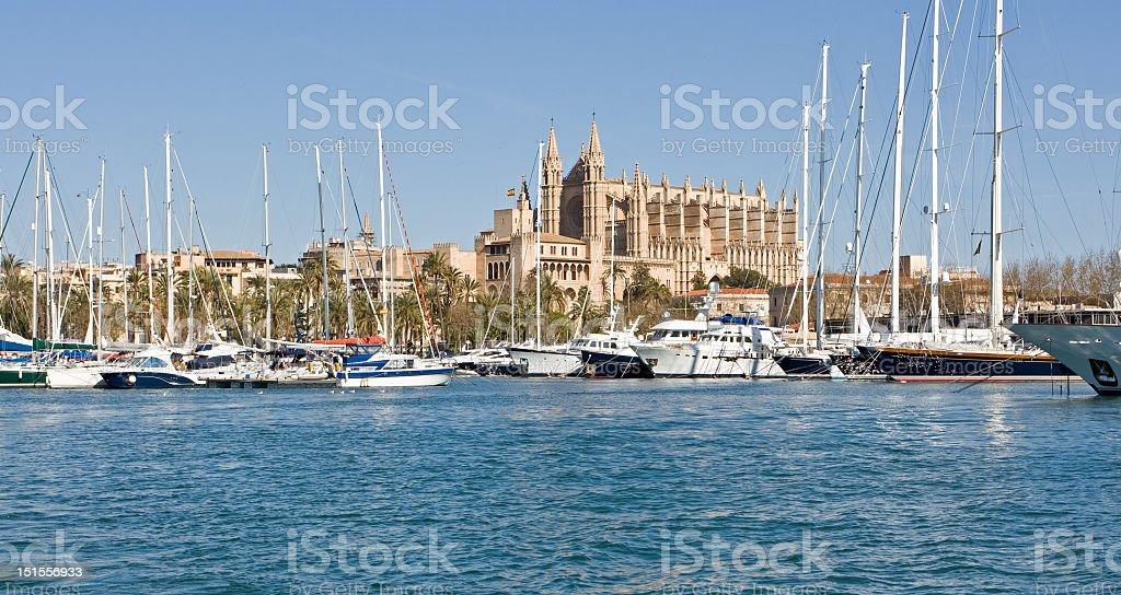 Kathedrale von Palma Lizenzfreies stock-foto