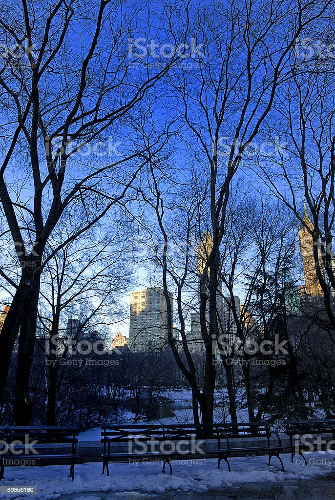 view of central park royaltyfri bildbanksbilder
