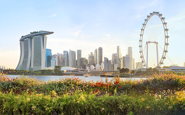 view of central singapore - singapore stock photos and pictures