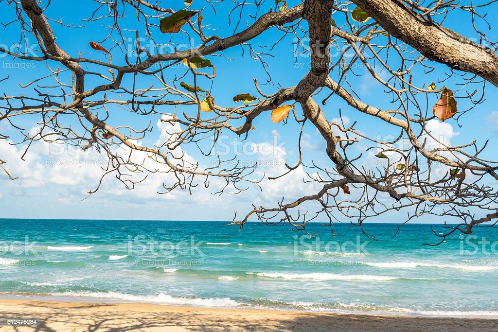 View of Chaweng Noi beach at Koh Samui Thailand stock photo