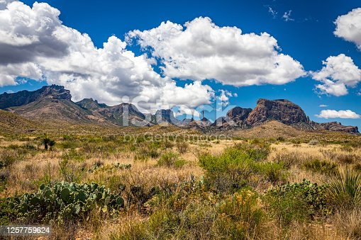 istock View  of Chisos Mountains from Gano Springs Road near Basin Junction Road at Big Bend National Park in Texas. 1257759624