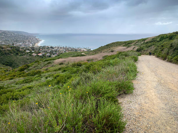 View of coastline from Dartmoor Trail in Laguna Beach, CA stock photo