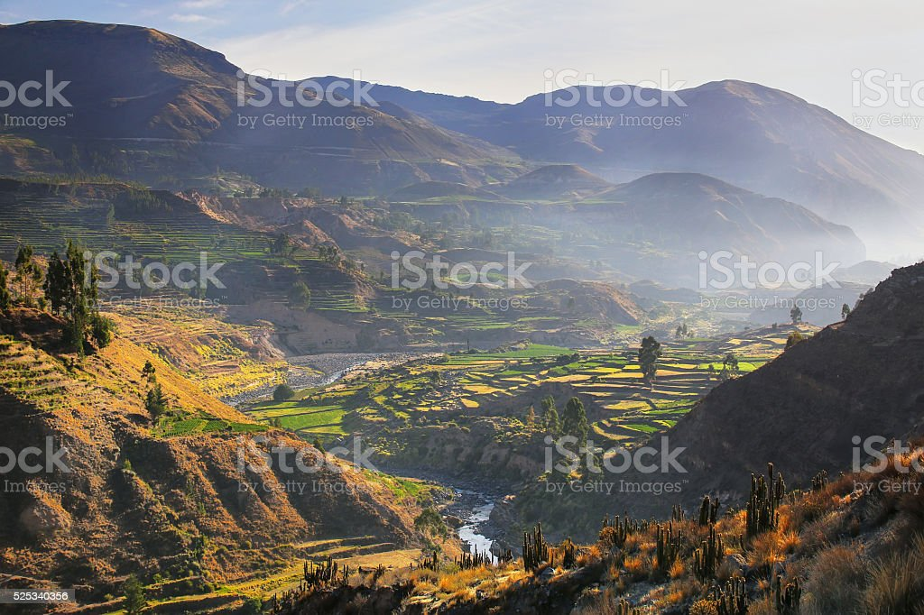 View of Colca Canyon with morning fog in Peru stock photo