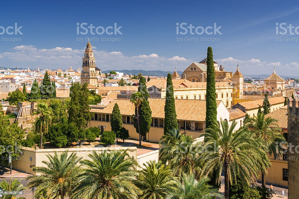 View of Cordoba from viewpoint of Alcazar, Andalusia province, Spain. - foto de stock