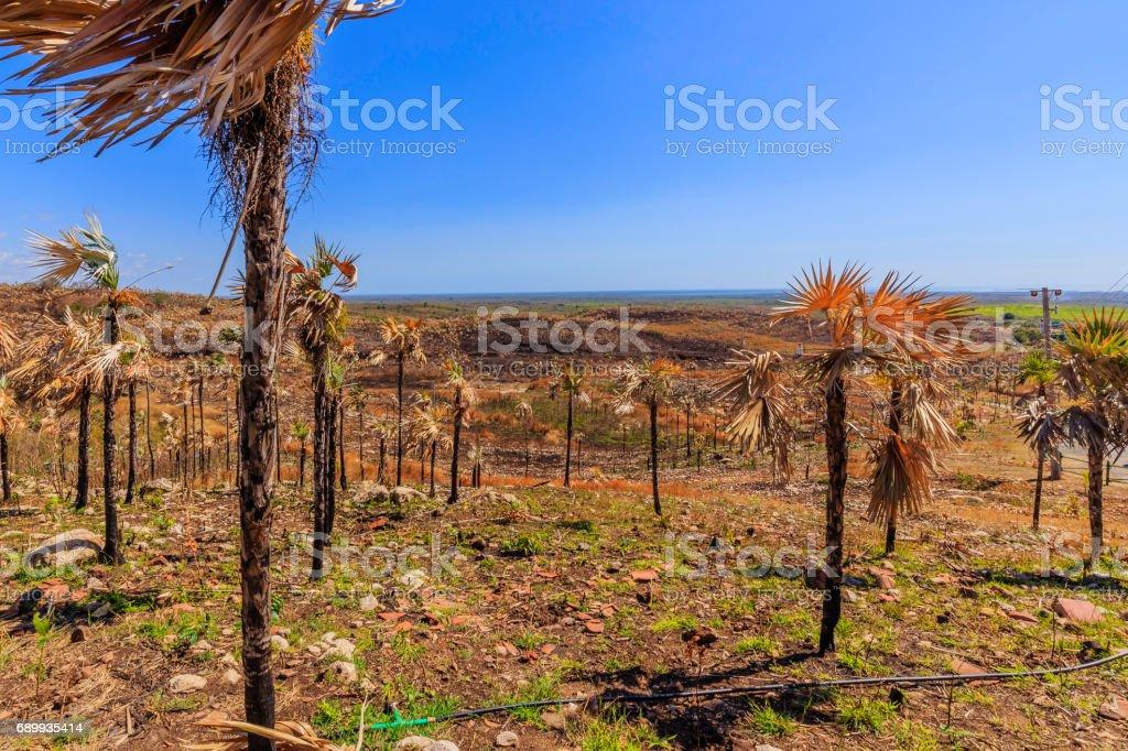 View of Cuba near Trinidad stock photo