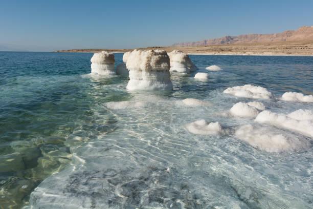 view of dead sea coastline - morze martwe zdjęcia i obrazy z banku zdjęć