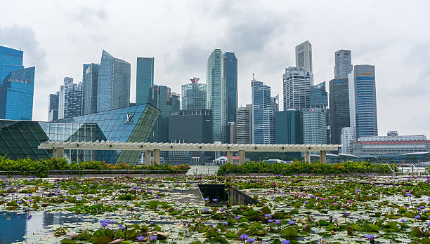 View of downtown Singapore city stock photo