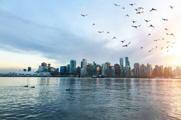View of downtown Vancouver from Stanley Park seawall at sunset stock photo