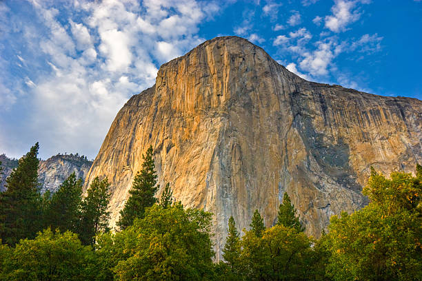 View of El Capitan as seen from below Face of El Capitan el capitan yosemite national park stock pictures, royalty-free photos & images