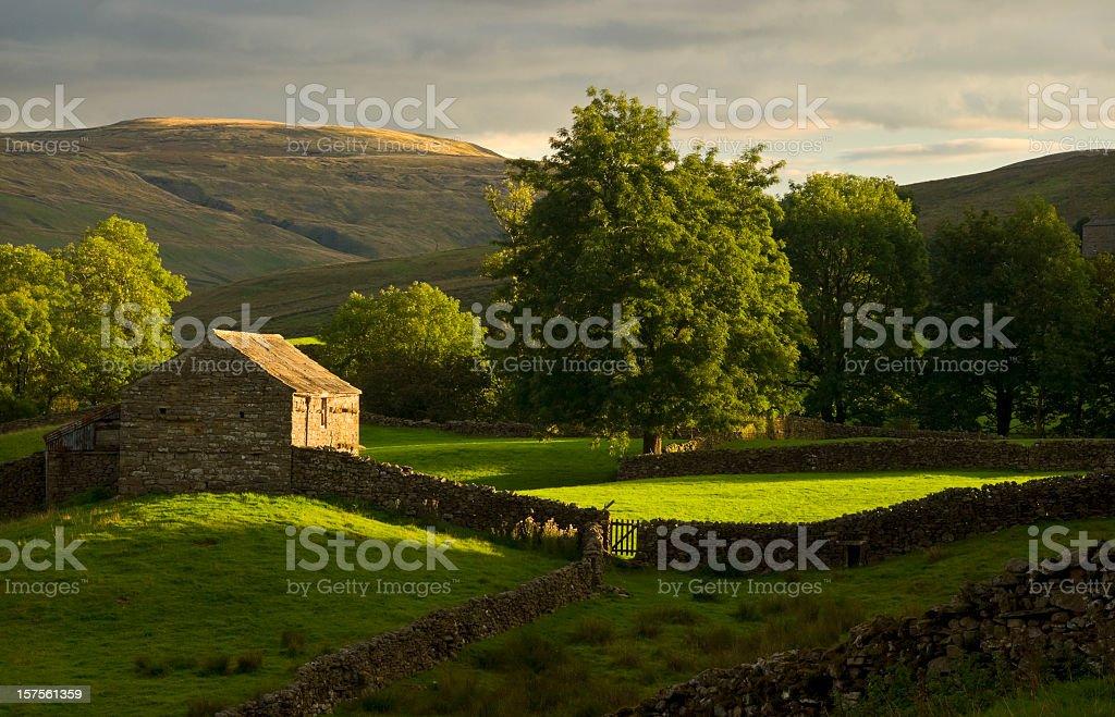 Swaledale, Yorkshire - Photo