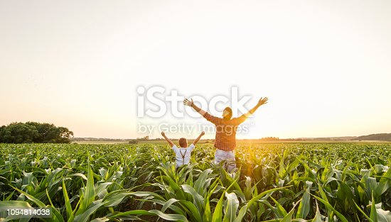 View of father and son on corn field,rising their hands with happiness
