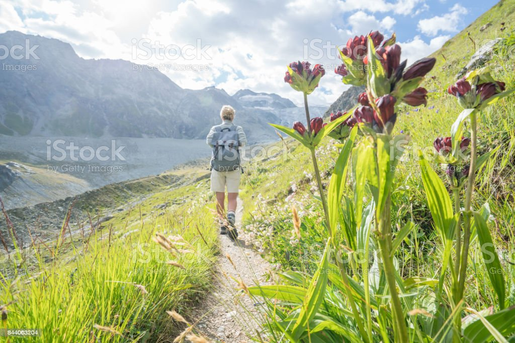 View of female hiking on sunny day, Switzerland stock photo