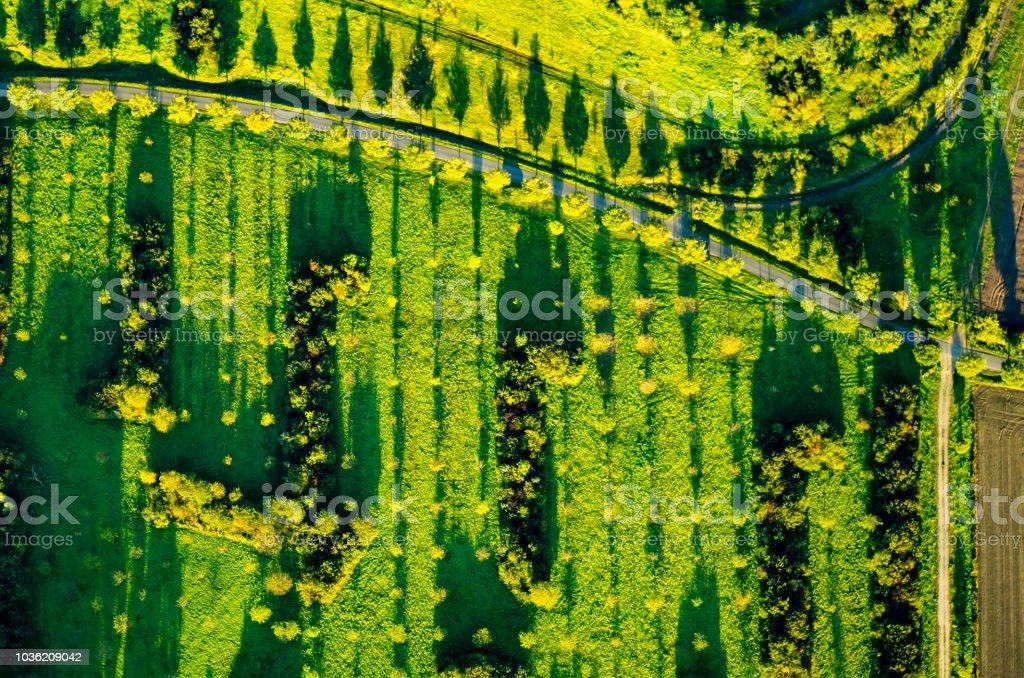 Blick auf Felder und Wiesen in der Abendsonne aus der Luft – Foto