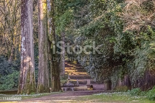 View of forest on Buçaco mountain, with ancient fountain, centenarian trees and pedestrian path and granite staircase in Portugal