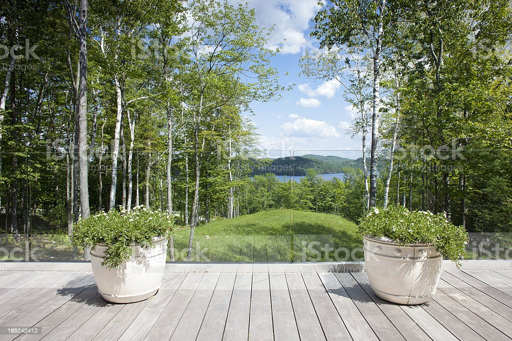 View of forrest from a deck. stock photo