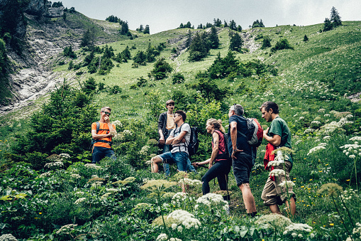 In the European Alps, in summer