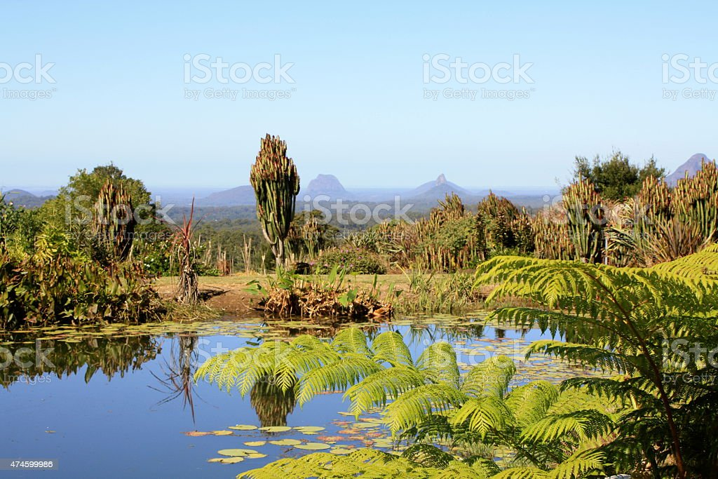 View of Glass House Mountains from Across a Pond stock photo