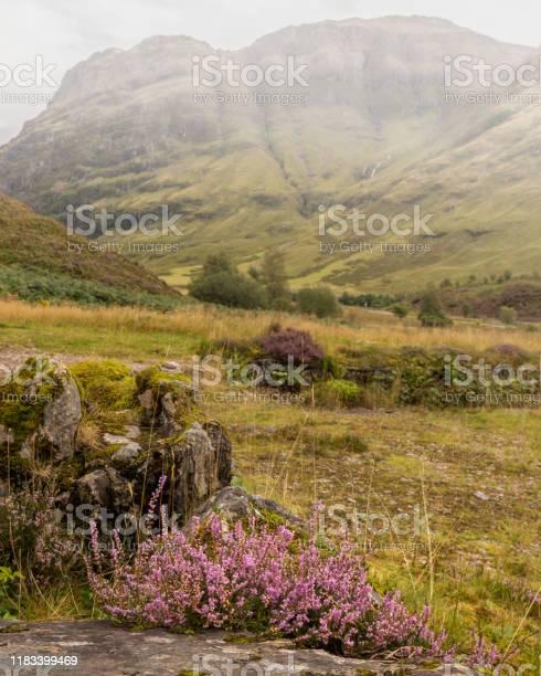 View of glencoe in the highlands of scotland picture id1183399469?b=1&k=6&m=1183399469&s=612x612&h=ejice4wfp6nycer3smeq9arj aof5wywwjju6pyhcus=