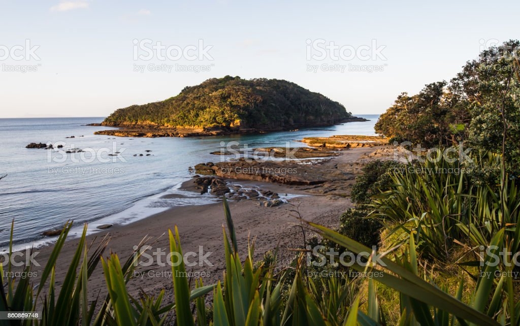 View of Goat Island, Auckland, New Zealand. stock photo