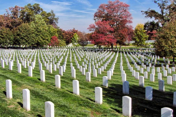 view of gravestones at arlington national cemetery - arlington national cemetery stock pictures, royalty-free photos & images