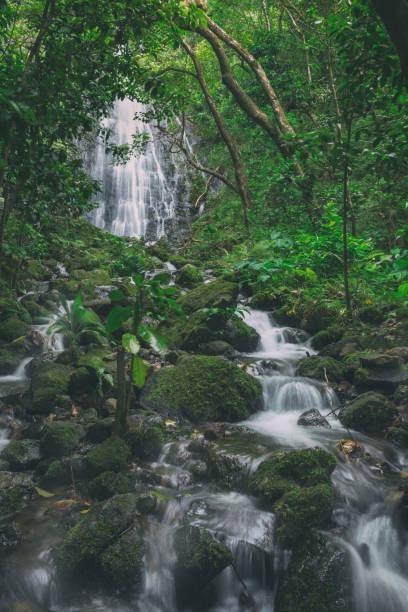 View of Hamama falls on Oahu island, Hawaii stock photo