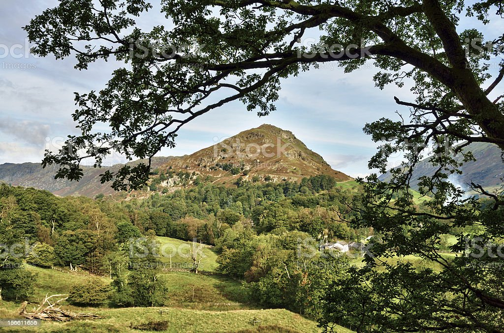 View of Helm Crag, framed within leafy branches royalty-free stock photo
