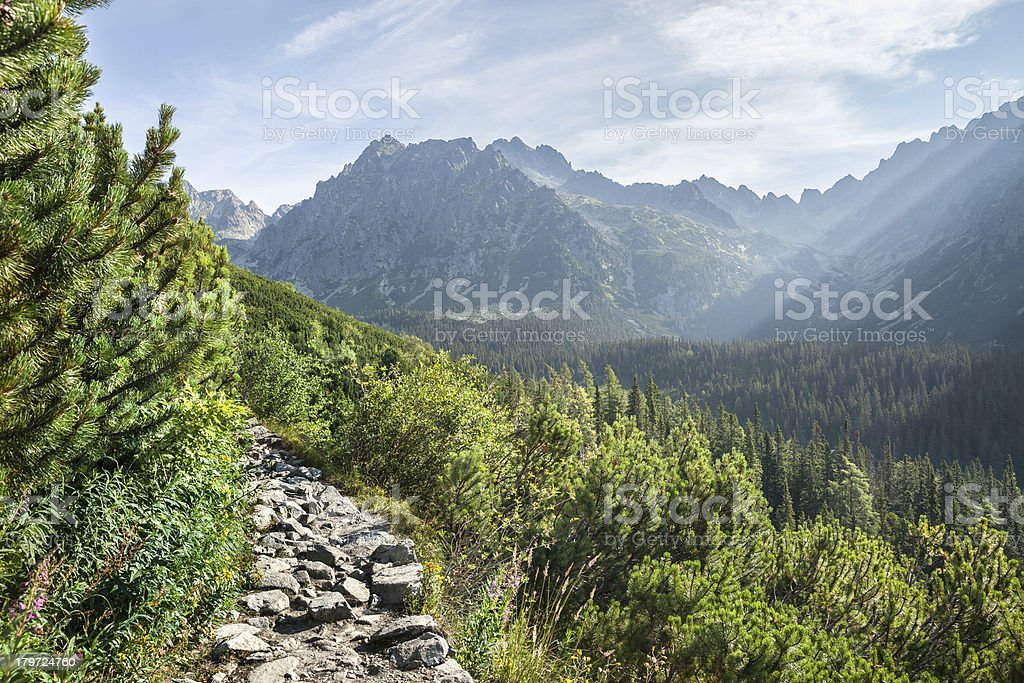 View of High Tatra Mountains from hiking trail royalty-free stock photo