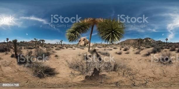 View of joshua tree picture id896504758?b=1&k=6&m=896504758&s=612x612&h=c6dffc3xtbv0hj c3ipvpkplhiazr3obdu7r8p81jdk=