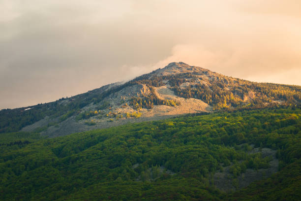 View of Kamen del peak in Vitosha Nature Park, Sofia stock photo