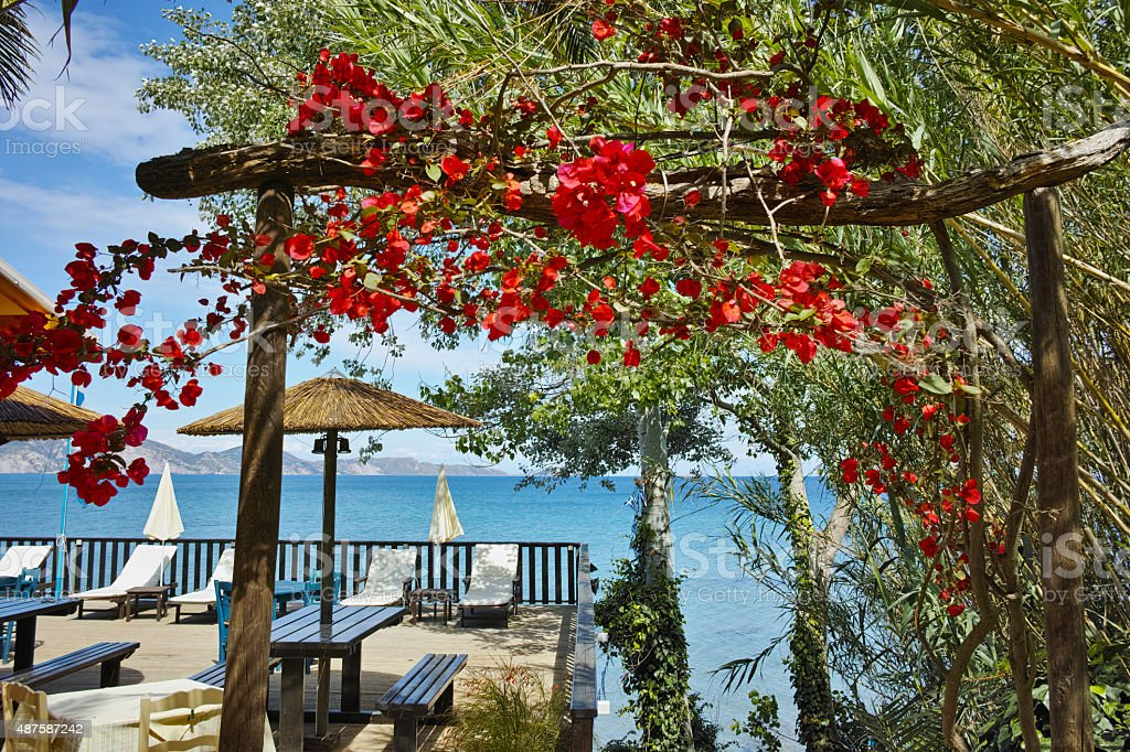 View of koukla beach with flowers at Zakynthos island stock photo