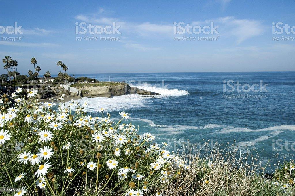 View of La Jolla Cove stock photo