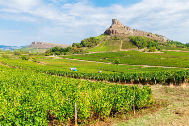 View of la Roche de Solutré with vineyards, in Burgundy, France stock photo