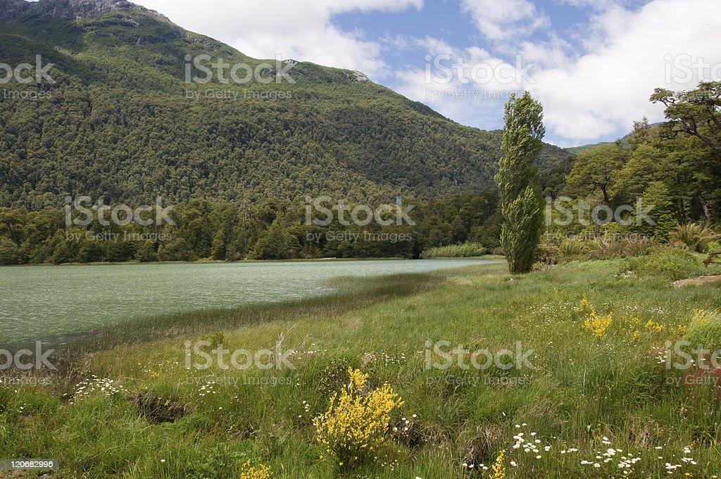 View of Lago Fria, Lake District, near Bariloche, Argentina stock photo