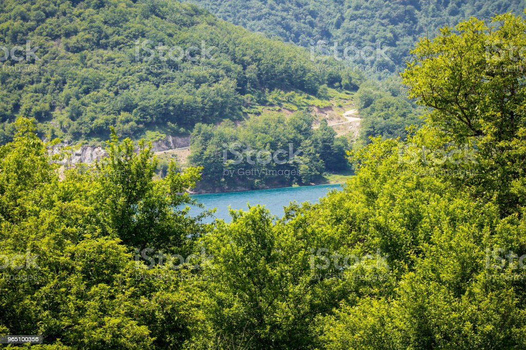 View Of Lake In Forest royalty-free stock photo