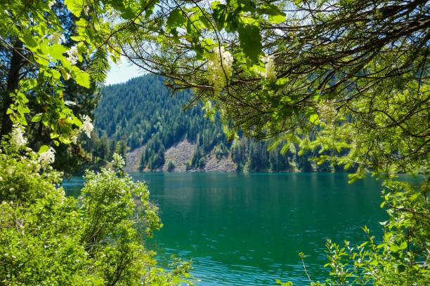 View of Lake Pend Oreille stock photo