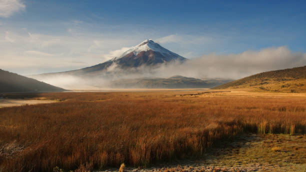 view of limpiopungo lagoon with volcano cotopaxi in the background on a cloudy morning - alejomiranda stock pictures, royalty-free photos & images