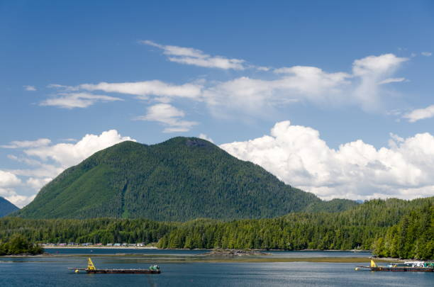 View of Lone Cone mountain across the Sound from Tofino pier, British Columbia stock photo