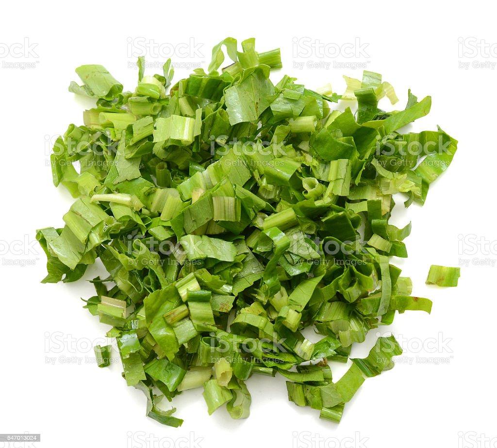 view of long cilantro chopped stock photo