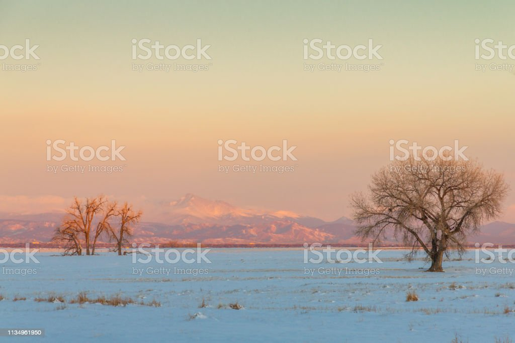 View of Longs Peak from the Rocky Mountain Arsenal stock photo