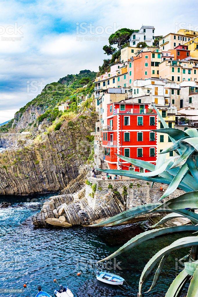 View of Manarola village, Cinque Terre, Italy stock photo