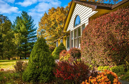 Midwestern house  in late afternoon in autumn; blooming flowers and bushes in front yard; blue sky and trees with yellow leaves in background