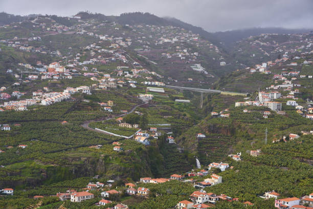 View of Miradouro da Torre viewpoint of villages in Madeira View of Miradouro da Torre viewpoint of villages in Madeira ilha da madeira stock pictures, royalty-free photos & images