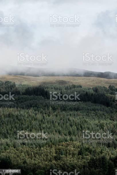 View of mist and forest from loch ness in scotland picture id1183398951?b=1&k=6&m=1183398951&s=612x612&h=vt5fudueskum9btghfu9oakrnkupeljvkkl c3k4xk0=