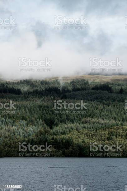 View of mist and forest from loch ness in scotland picture id1183398952?b=1&k=6&m=1183398952&s=612x612&h=bxz9u7mtwqsoohw5en3v5t ejpkqfb  t5j8ihqouxs=