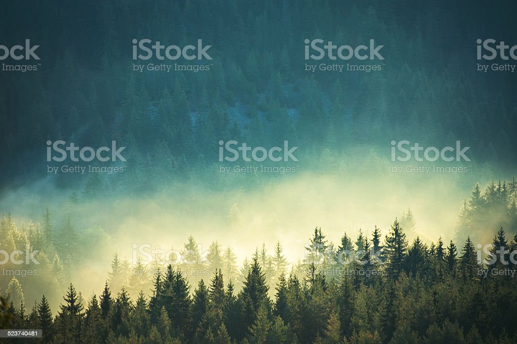 View of misty fog mountains in autumn stock photo